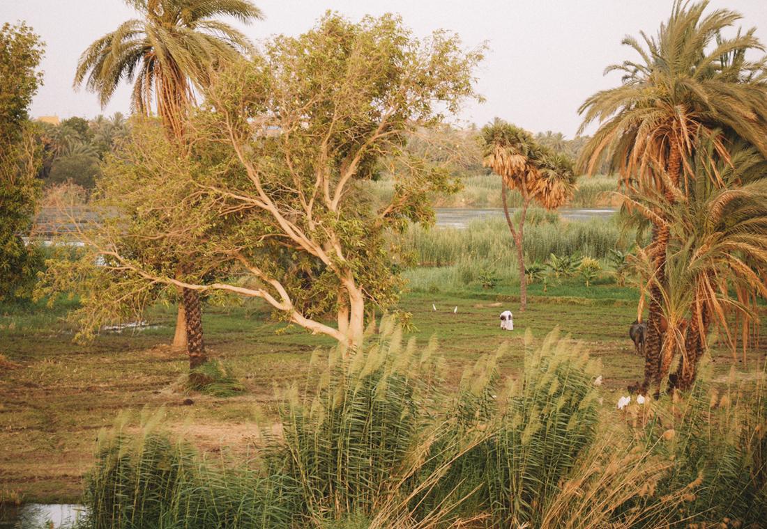 J3-Egypte21