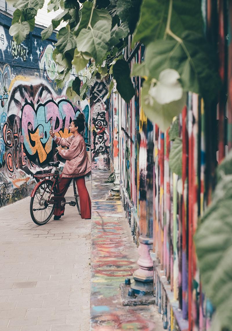 lechienataches-gand-streetart-4