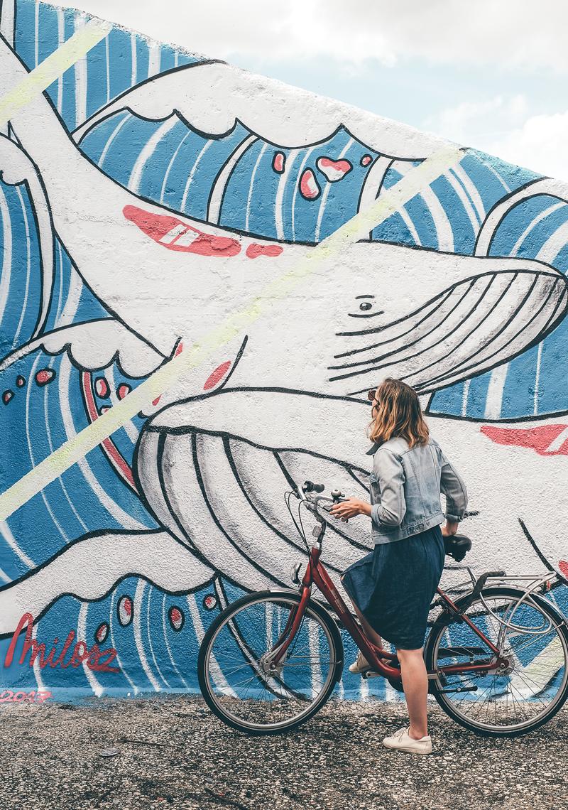 lechienataches-gand-streetart-5