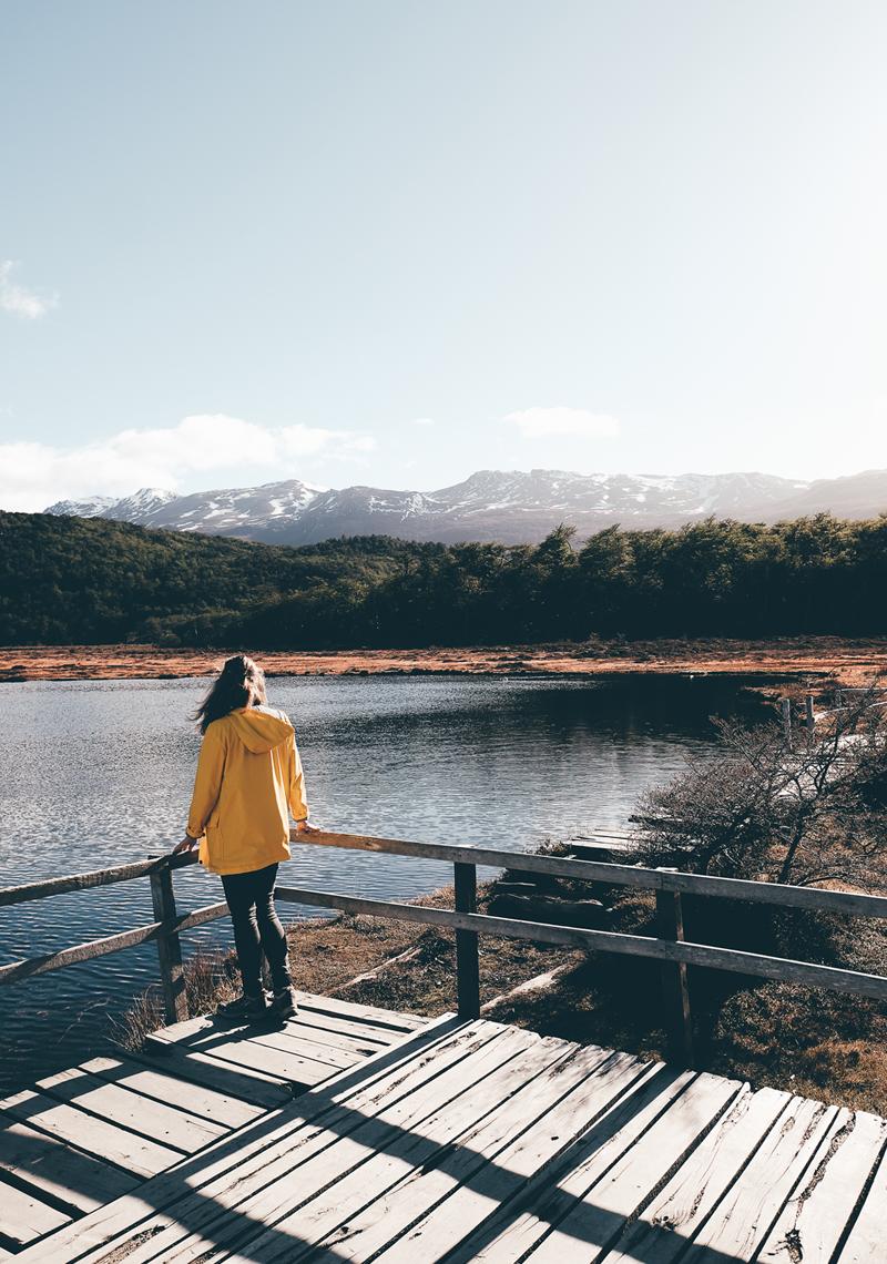 lechienataches-UshuaiaParcTerreFeu4